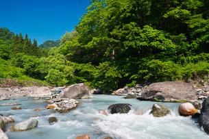 小滝川ヒスイ峡 小滝川の写真素材 [FYI02988628]