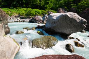 小滝川ヒスイ峡 小滝川の写真素材 [FYI02988630]