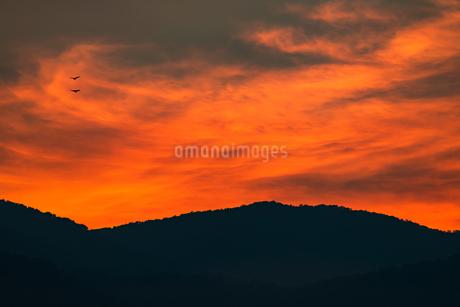 夕焼けの写真素材 [FYI02989244]
