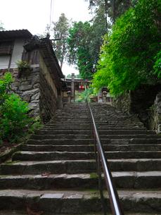 長命寺の石段と山門の写真素材 [FYI02989382]