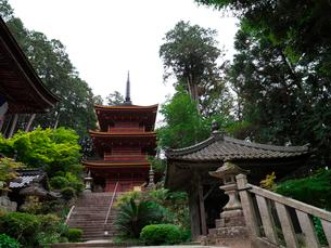 長命寺の三重塔と納札所の写真素材 [FYI02989387]