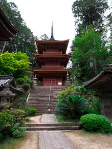 長命寺の三重塔の写真素材 [FYI02989390]