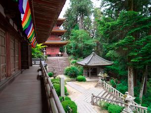 長命寺の本殿から見た三重塔と納札堂の写真素材 [FYI02989393]