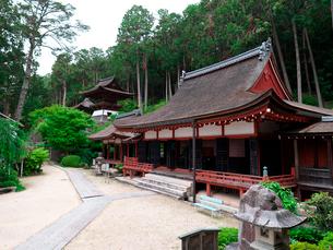 長命寺の三仏堂と鐘楼の写真素材 [FYI02989395]