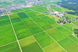 新潟県の田園風景の写真素材 [FYI02989577]