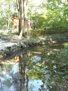 下鴨神社境内小川の写真素材 [FYI02989599]
