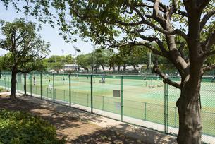 横浜市三ツ沢公園のテニスコートの写真素材 [FYI02989650]