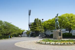 三ツ沢公園の風景の写真素材 [FYI02989656]