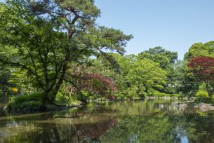 有栖川記念公園の写真素材 [FYI02989670]