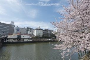 市ヶ谷駅周辺の桜の写真素材 [FYI02989673]