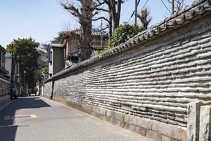 東京谷中の観音寺の築地塀の写真素材 [FYI02989710]