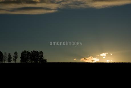 夕陽が沈む丘 美瑛町の写真素材 [FYI02989761]
