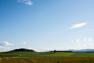 秋の畑作地帯と青空の写真素材 [FYI02989767]