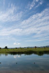 大きな池がある都市公園の写真素材 [FYI02989805]