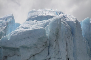 ペリト・モレノ氷河の写真素材 [FYI02989814]