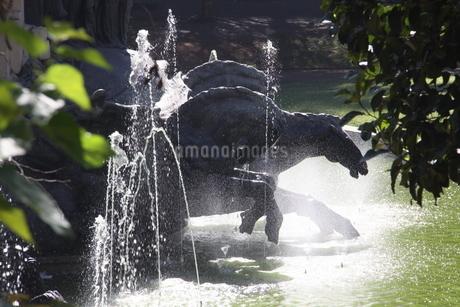 サンパウロの噴水と馬の銅像の写真素材 [FYI02989870]