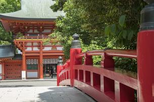 大宮氷川神社の風景の写真素材 [FYI02989925]