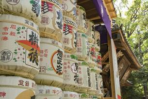 大宮氷川神社の風景の写真素材 [FYI02989928]