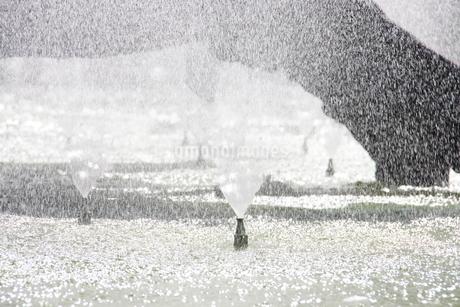 サンパウロの噴水としぶきの写真素材 [FYI02989967]