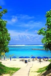夏のリゾートビーチの写真素材 [FYI02990059]