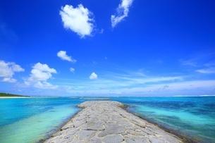 海と堤防の写真素材 [FYI02990068]