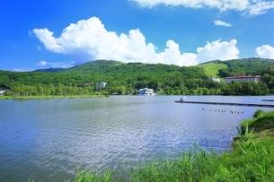 湖と夏空に雲の写真素材 [FYI02990092]
