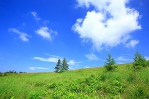 高原と夏空に雲の写真素材 [FYI02990095]