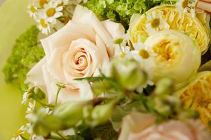春の花束の写真素材 [FYI02990378]