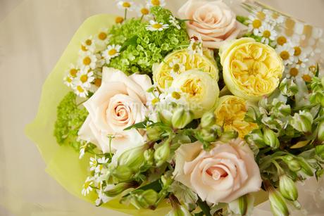 春の花束の写真素材 [FYI02990380]