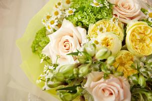 春の花束の写真素材 [FYI02990381]