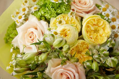 春の花束の写真素材 [FYI02990384]