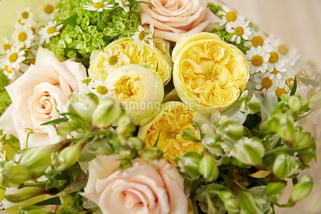 春の花束の写真素材 [FYI02990386]