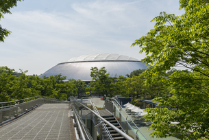 所沢の西武ドーム球場の写真素材 [FYI02990467]