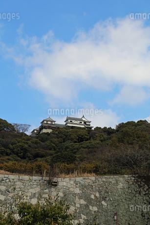 堀之内からの松山城の写真素材 [FYI02990700]