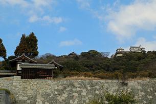 堀之内からの松山城の写真素材 [FYI02990701]
