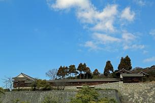 堀之内からの松山城の写真素材 [FYI02990702]
