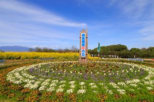 鼻高展望花の丘の写真素材 [FYI02990848]