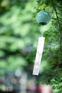 木陰の間でひっそりと風に揺られる水色の風鈴の写真素材 [FYI02990946]