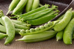 瑞々しい春野菜の収穫 豆編の写真素材 [FYI02990955]