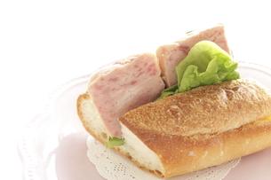 スパムのサンドイッチの写真素材 [FYI02991134]
