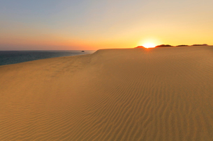山陰海岸 鳥取砂丘と日本海に朝日の写真素材 [FYI02991213]