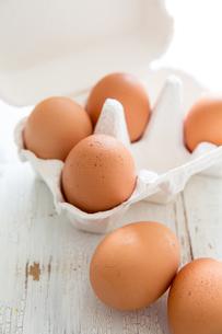新鮮な卵の写真素材 [FYI02991228]