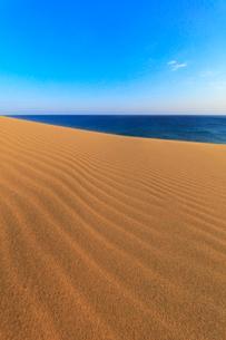 砂丘と朝の海の写真素材 [FYI02991238]
