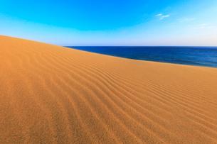 砂丘と朝の海の写真素材 [FYI02991242]
