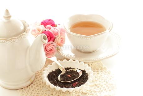 飲食のバラ茶の写真素材 [FYI02991274]