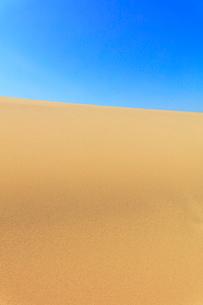 砂丘と青空の写真素材 [FYI02991293]