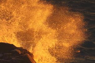 大波弾ける斜光の海岸の写真素材 [FYI02991296]