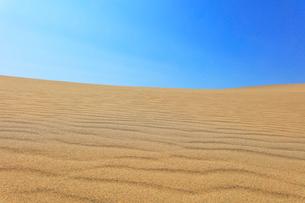 砂丘と青空の写真素材 [FYI02991297]