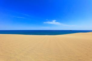砂丘より望む青い海の写真素材 [FYI02991319]