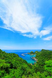 山陰海岸 日本海に居組港の写真素材 [FYI02991381]